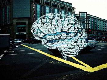 Cerebro humano y emociones personales. Presentación