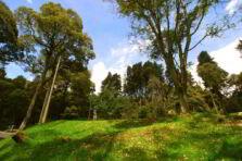 Capacidad de uso de la tierra del Parque Nacional Juan Bautista Pérez Rancier. República Dominicana