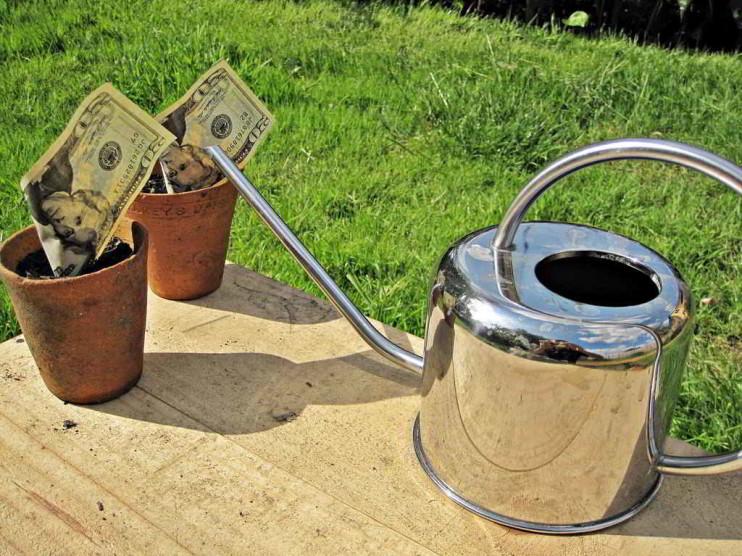Estructura de financiamiento y crecimiento de pequeñas y medianas empresas