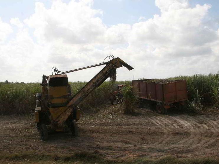 Modelo de gestión de la innovación tecnológica en un ente del agro cubano