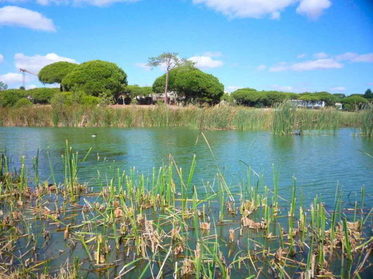 Capacidad de uso público del Parque Nacional Juan Bautista Pérez Rancier. Cuba