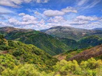 Reflexiones sobre el futuro del sector ecológico en España