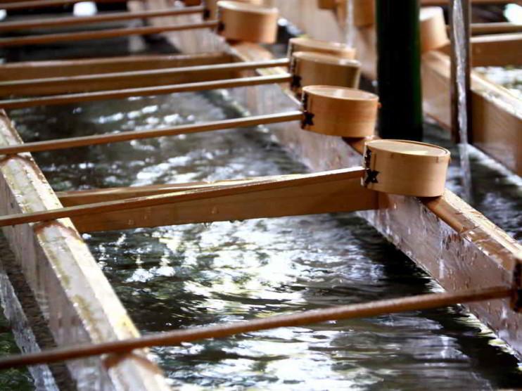 Proyecto empresarial de purificadores de agua. Aplicación del modelo de Gary Hamel