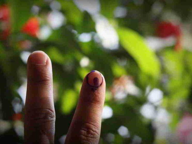 Modelos de comportamiento electoral y político