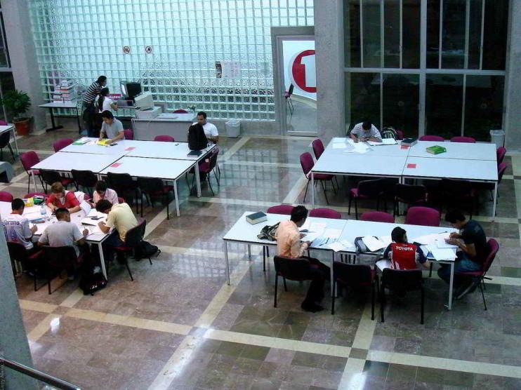 Estrategias de aprendizaje para estudiantes de licenciatura