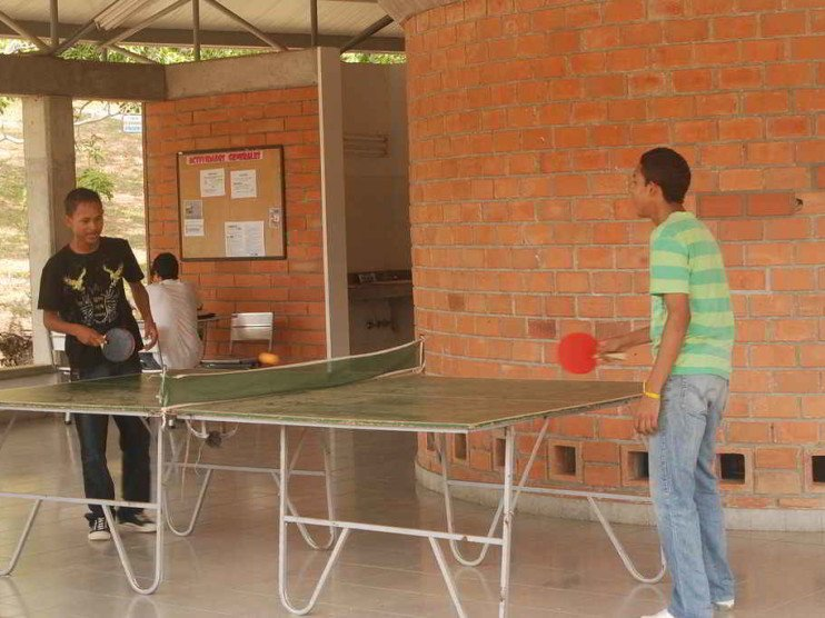 Actividades físicas recreativas en la comunidad universitaria