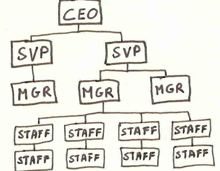 Estructura organizacional de la empresa Tempometa Ltda