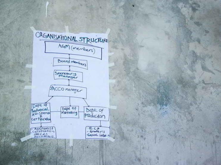 Teoría de la organización y estructura funcional en COFREM