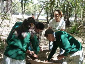 Confusiones sobre educación por competencias en México