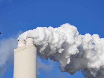 Comercio internacional y normas de protección del medio ambiente