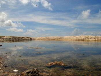 Aspectos da contabilidade ambiental, desenvolvimento sustentável