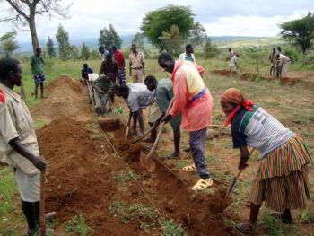 Financiamiento para el desarrollo de proyectos agroforestales