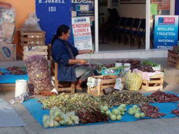 Identificación de los problemas económicos y sociales de Oaxaca