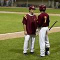 ¿Es el Coach un asesor?