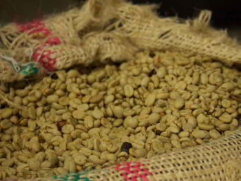 Historia y análisis del Café como producto