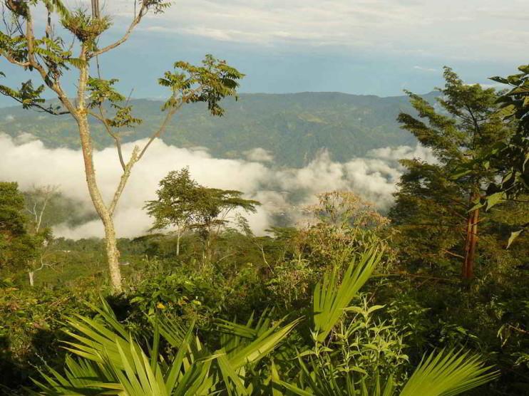 Entrevista a Beatriz Uribe Botero, Ministra de Medio Ambiente de Colombia. Por una política nacional de producción y consumo sostenible