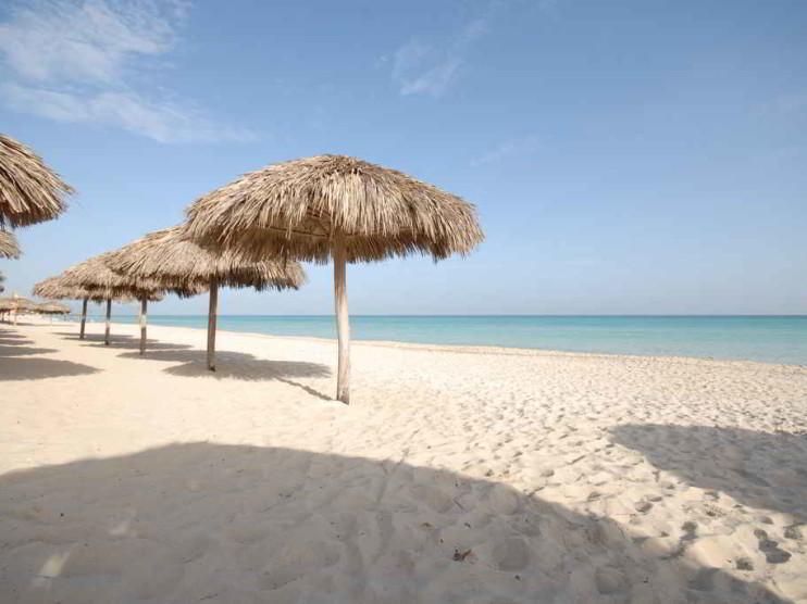 Formación de competencias laborales mediante el estudio de casos en profesionales del área económica de empresas turísticas
