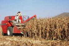 Calidad y seguridad en la actividad agroindustrial de México