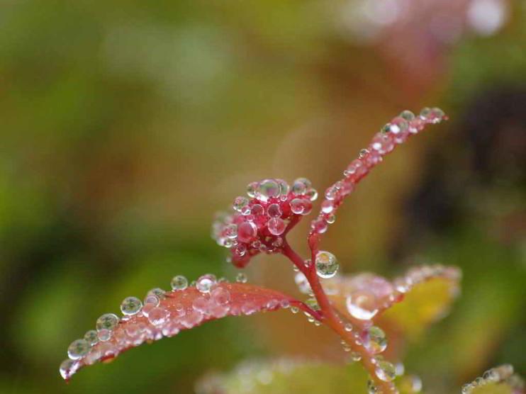 Hidroética. Valores aplicados a la sostenibilidad ambiental y el agua