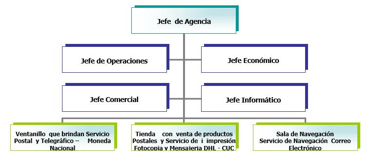 Organigrama del Plan de Negocio