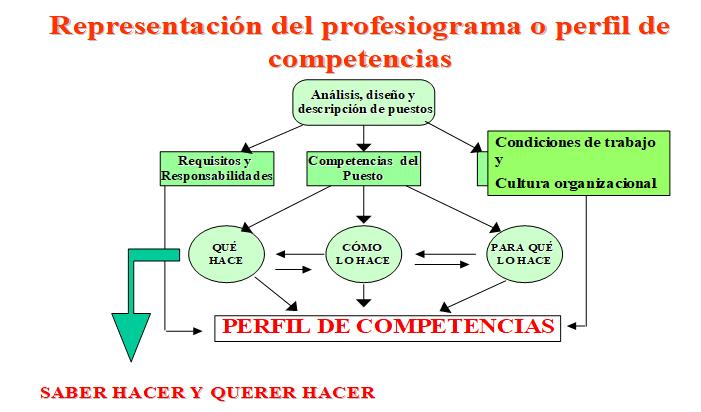 Representación del profesiograma o perfil de competencia