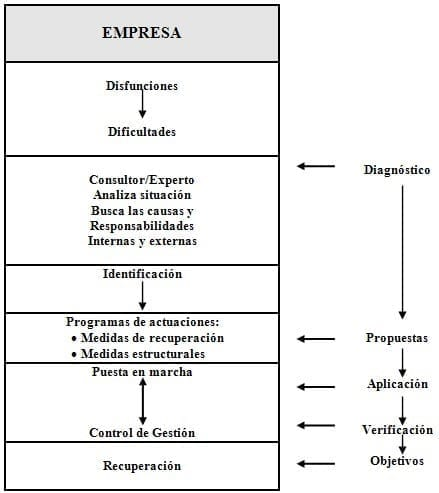 Estructura Organizacional de la Empresa Constructora