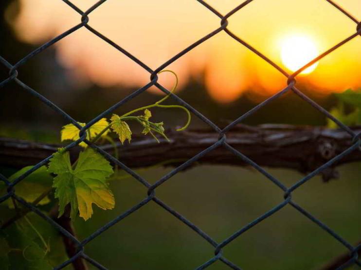 3 barreras que te impiden tomar decisiones y cómo superarlas