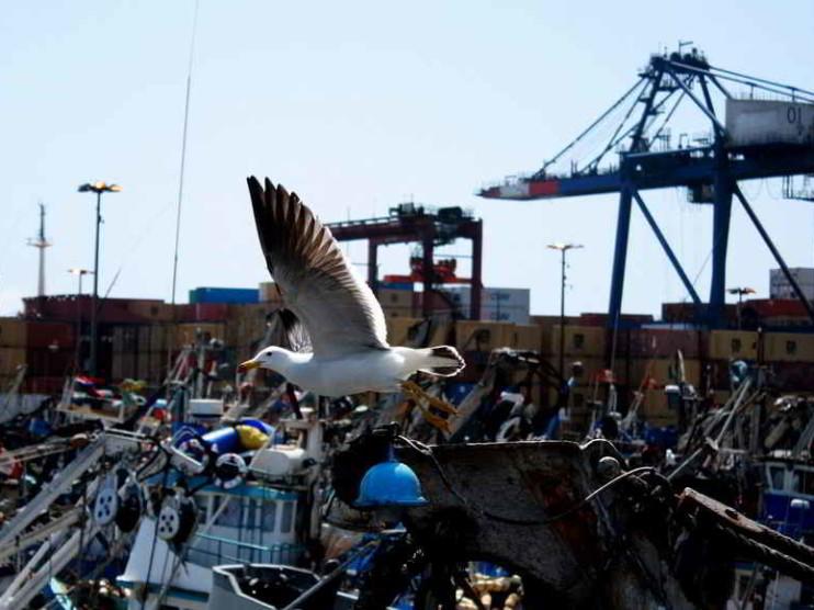 Sistema de control interno para la gestión efectiva de la Autoridad Portuaria Nacional del Perú