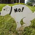 Importancia de saber decir NO al tomar decisiones