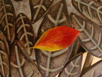Atracción del talento y responsabilidad social en las Pymes