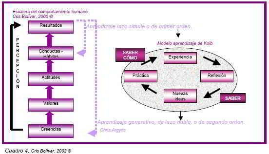 Cuadro 4 Escalera de comportamiento humano