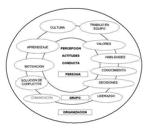 Niveles y variables del capital humano asociados a la gestión del conocimiento