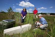 La integración de la ciencia en los estudios ambientales