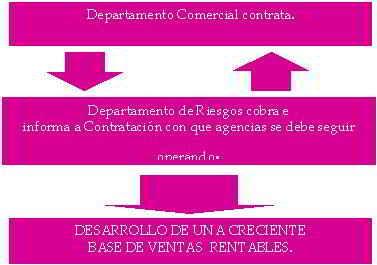 Interrelación departamento de riesgo - estructura organizativa de la empresa
