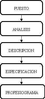 Elementos del diseño de los puestos de trabajo