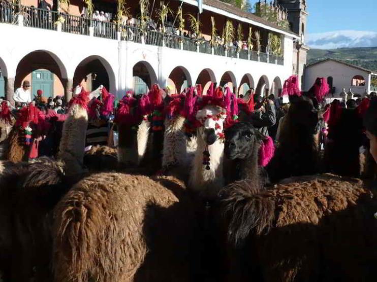 Segmentos de población en Huamanga Perú
