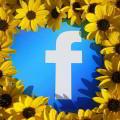 La publicidad de pago por clic en facebook