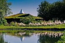 La educación ambiental y sus desafíos en la sociedad del siglo XXI