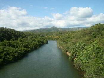 Acciones de protección del Medio Ambiente en una provincia de Cuba