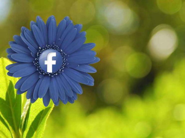 Redes Sociales. Indicadores de influencia y su importancia