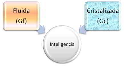inteligencia concepto: