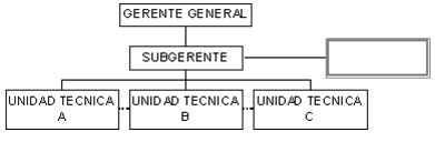 Condición especial o autonomía - Símbolos y referencias convencionales de mayor uso en un organigrama