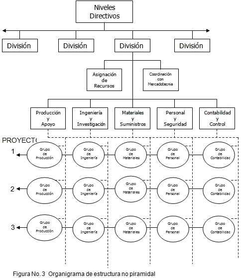Organigrama de estructura no piramidal