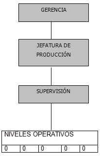 Estructura organizacional monofuncional