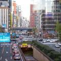 Consideraciones sobre la economía japonesa (2011-2012)