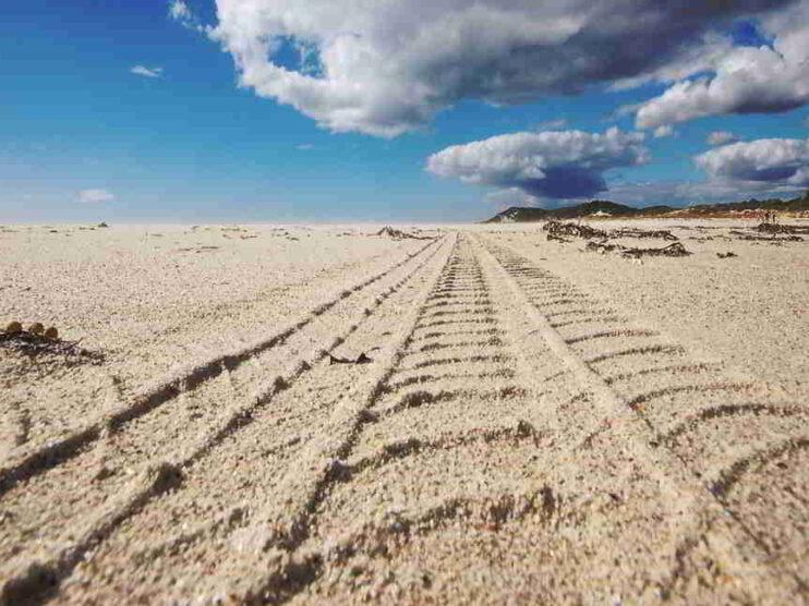 4 reflexiones para descubrir tu vocación