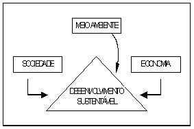 Interpretação do Desenvolvimento Sustentável