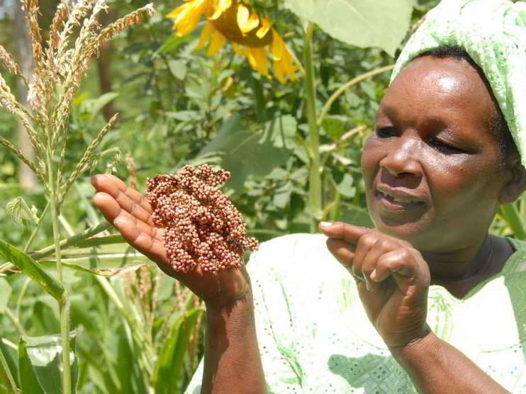 Mujer. Su aporte y trascendencia en el desarrollo de la sociedad mundial. Ponencia