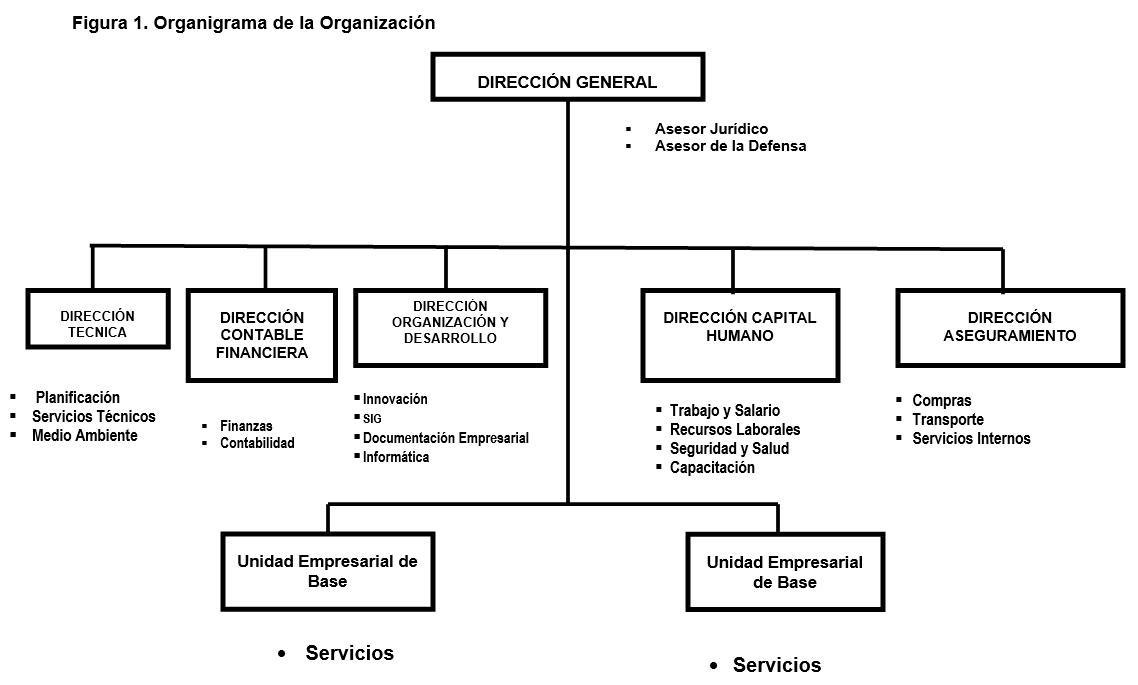 Organigrama de la Organización