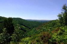 Análisis estratégico situacional para la región de los Valles de Comayagua Honduras